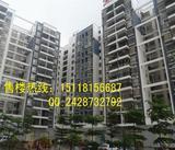 觀瀾村委統建樓